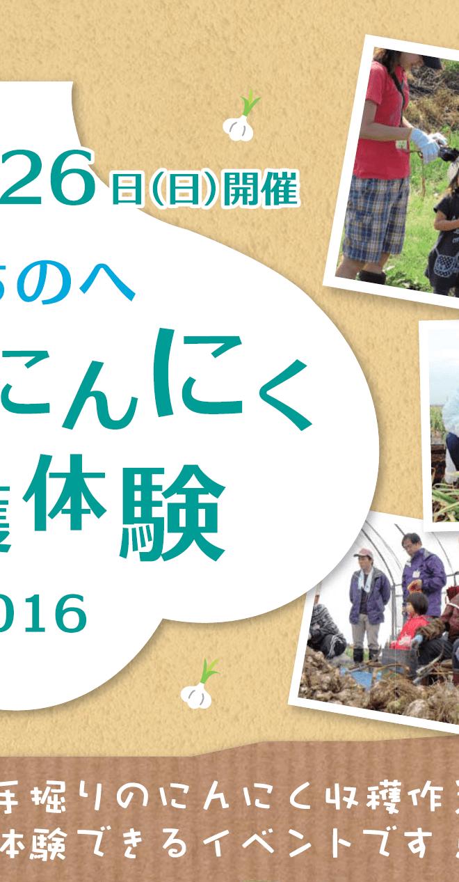 「しちのへかだれ!にんにく収穫体験2017」