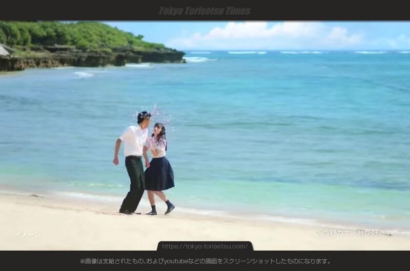 レノアハピネスCM同級生の30cm砂浜のカップルの二人は誰?半径30cmのハピネス