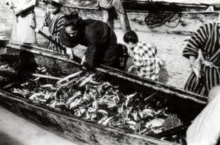 サバニいっぱいの魚(トビウオ?)が捕れました。喜ぶ家族と、はしゃぐ子共達(昭和13年)
