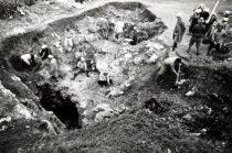 リン鉱石の採掘現場。何処の場所でいつ頃採掘していたのでしょうか? ちなみに採掘していた会社は「東亜燐鉱株式会社」というそうです。与論に初めて自動車を持ち込んだのもこの会社だそうです。