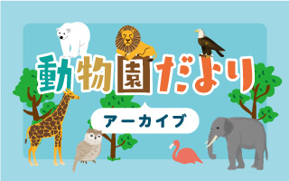 動物園だより