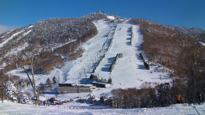 Shiga Kogen Skigebied Nagano