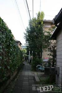 30-164.jpg