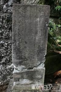 39-181.jpg