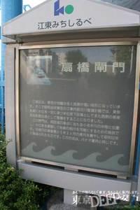 33-284.jpg