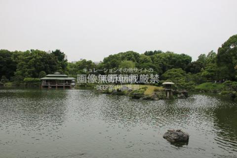 江東区 清澄白河