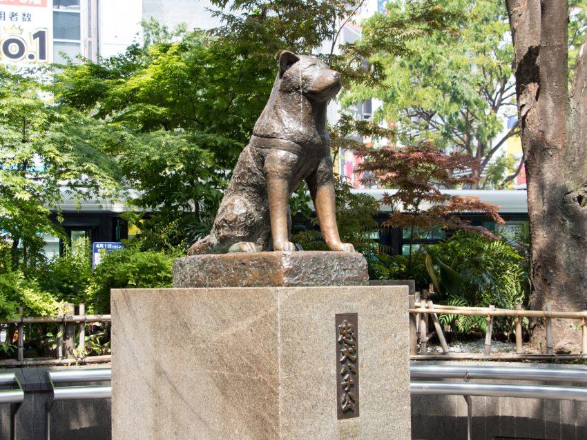 Hachiko Statue - tokyoisours.com