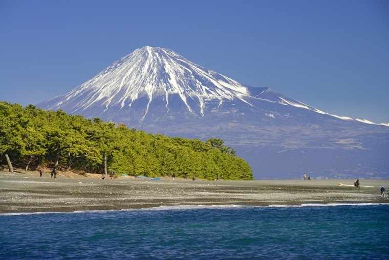 静岡遠征決まりました!