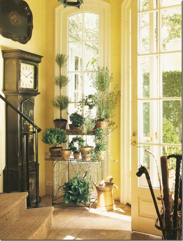 Foyer Plant Stand : Golden ginkgo…warm yellow tones for autumn