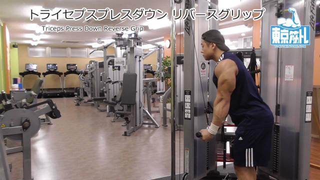 トライセプスプレスダウンのリバースグリップで上腕三頭筋内側頭を鍛えるやり方とフォーム