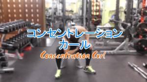 コンセントレーションカール(Concentration Curl)のやり方とフォーム