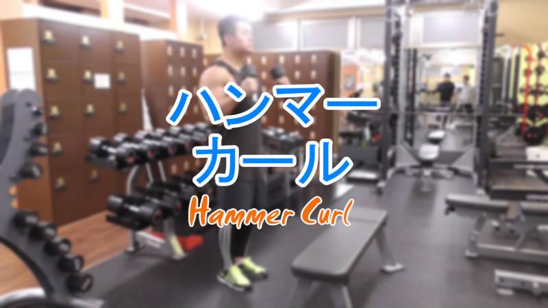 ハンマーカール(Hammer Curl)のやり方とフォーム