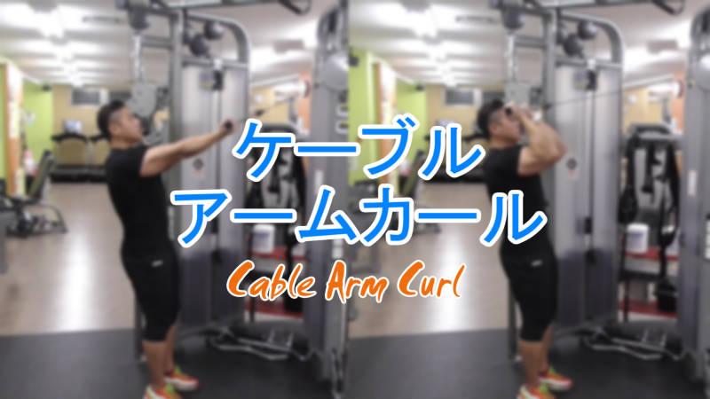 ケーブルアームカール(Cable Arm Curl)のやり方とフォーム