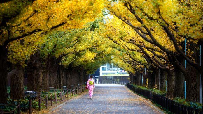 Tokyo Area Nature Parks