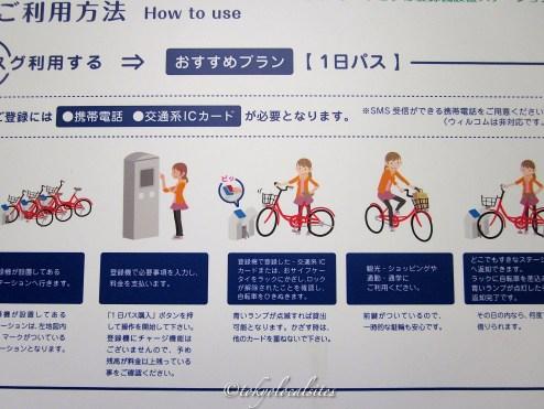 Bike Hire Odaiba
