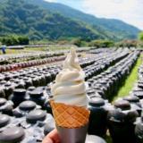 黒酢の郷 桷志田さんで、黒酢の壺畑を眺めながら黒酢ソフトクリーム
