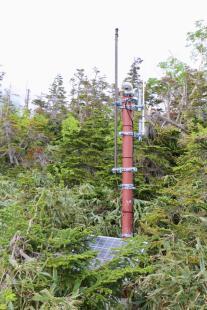 栂池自然園の無線Wi-Fi