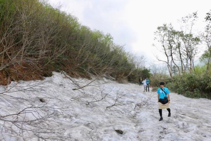 栂池自然園の雪渓