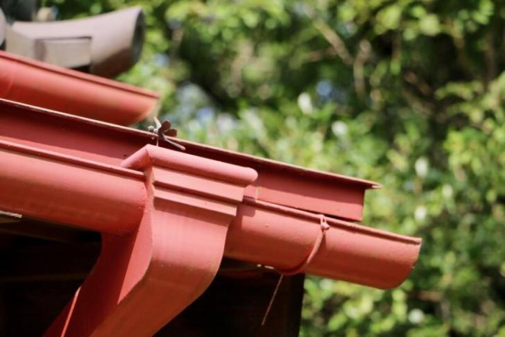 屋根の雨どいの上にトンボ