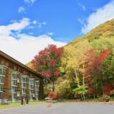 中有禅金谷ホテル前の紅葉