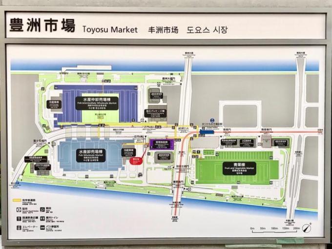 豊洲市場のMAP