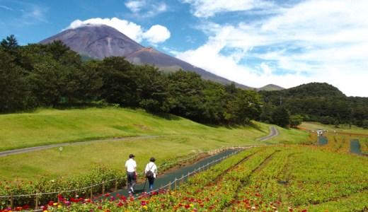 【天空の花畑】「富士 花めぐりの里」は富士山と花が楽しめる絶景スポット