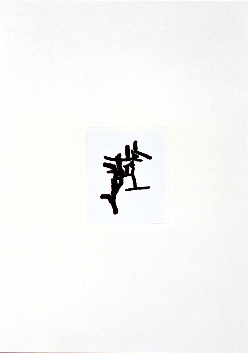 伊勢克也|自主制作作品 「高尾山のキクイムシ」