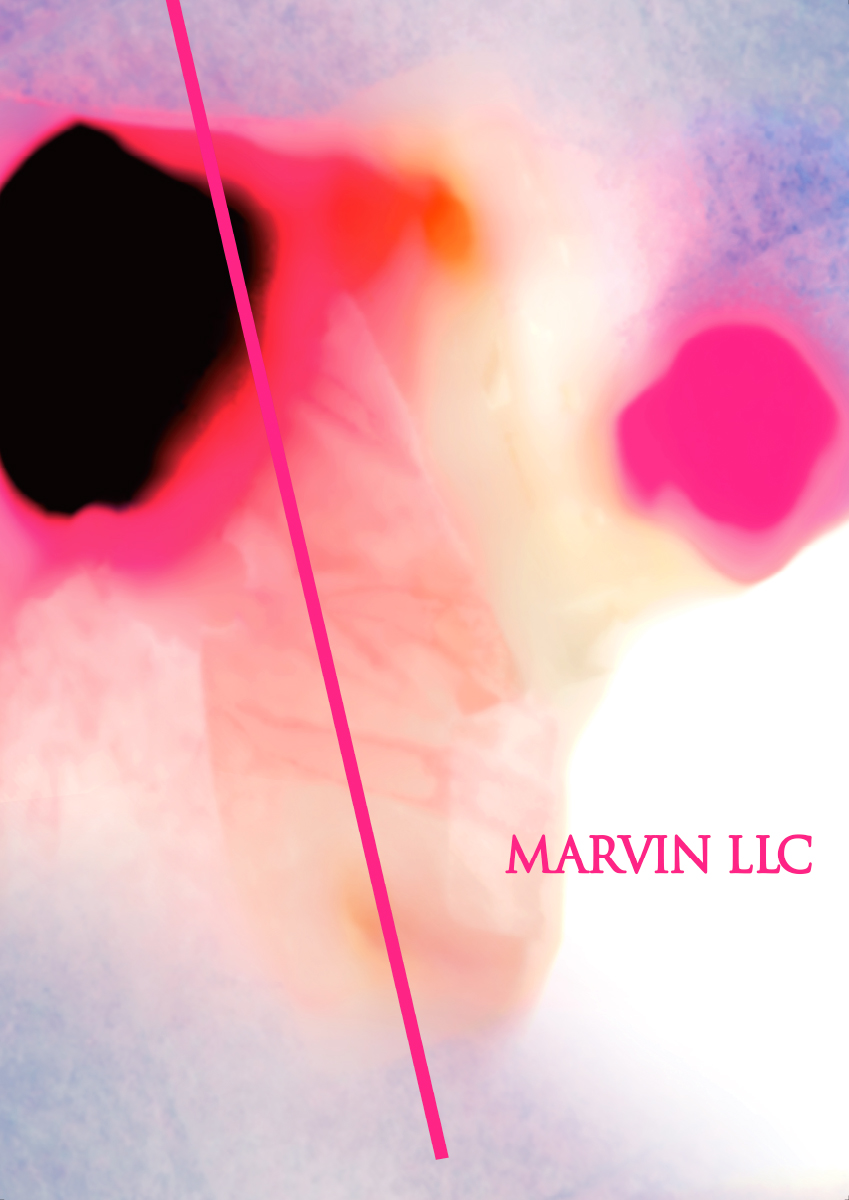 MARVIN LLC / 2019 | 広告