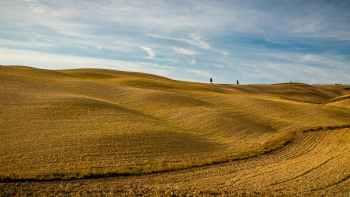 Desapropriação rural