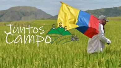 Photo of Ministerio de Agricultura apoya con insumos agropecuarios a los campesinos