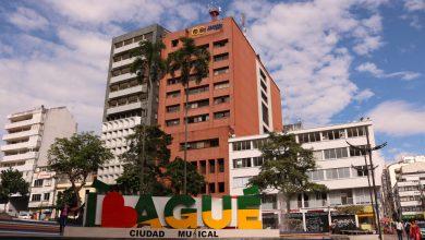 Photo of El Centro de Desarrollo Empresarial de la Cámara de Comercio de Ibagué realizará el programa de fortalecimiento empresarial +Conocimiento +Empresa