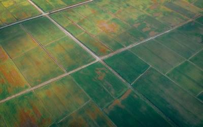 Landwirte in Mecklenburg Vorpommern kämpfen offensichtlich mit Gülle, Überdüngung und Nitratbelastung