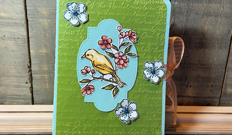 Bird Ballad Book of Notecards