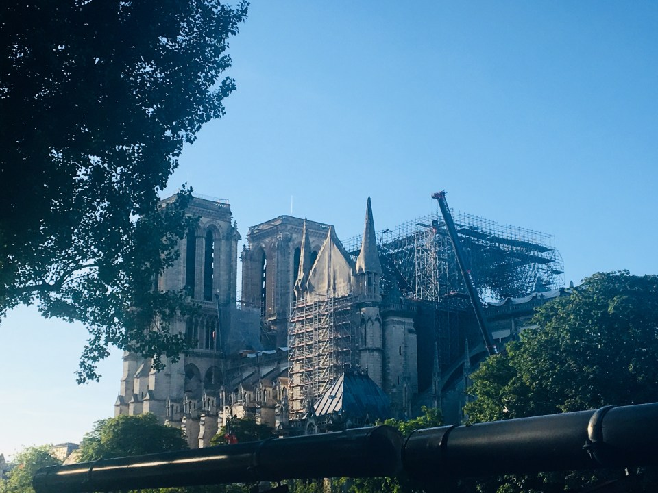 Cathedral of Notre Dame, post fire