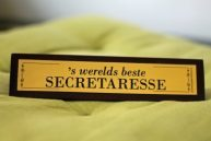 De beste directiesecretaresse, virtueel assistent, virtual professional, office manager, management assistant