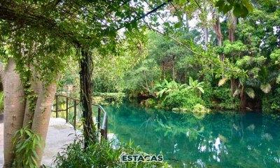 Parque Natural Las Estacas de Morelos