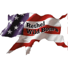 rethel-wild-boars-250x250