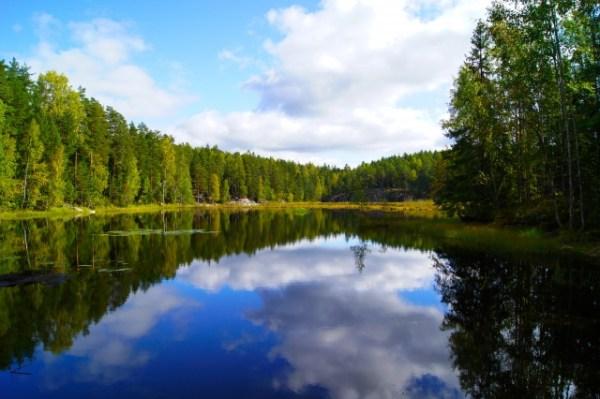 フィンランド 北欧食器