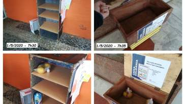 caixas solidarias 1 5