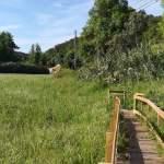 ecovia ciclovia prado IMG 20200503 090119