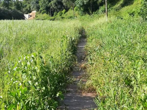 ecovia ciclovia prado IMG 20200503 090302