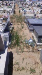 cemitério 9893_3146794438180913760_o