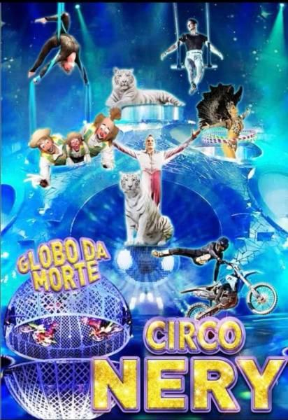 circo 2692 3063036370136529202 o