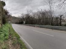 estrada das algarvias IMG_20210121_170526