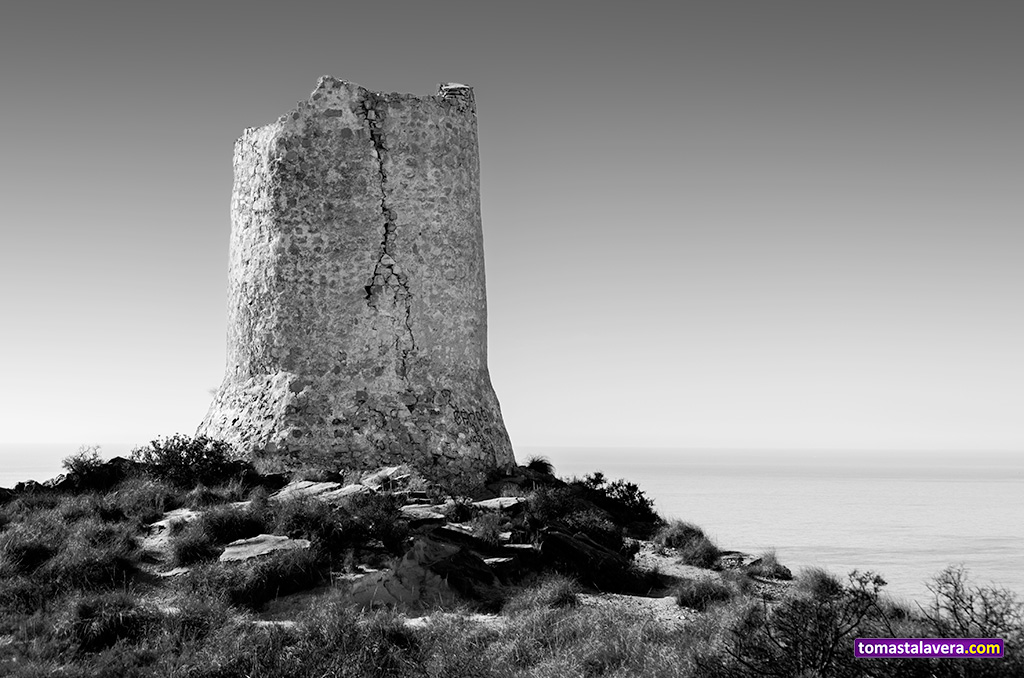 torre-reixes-campello-II