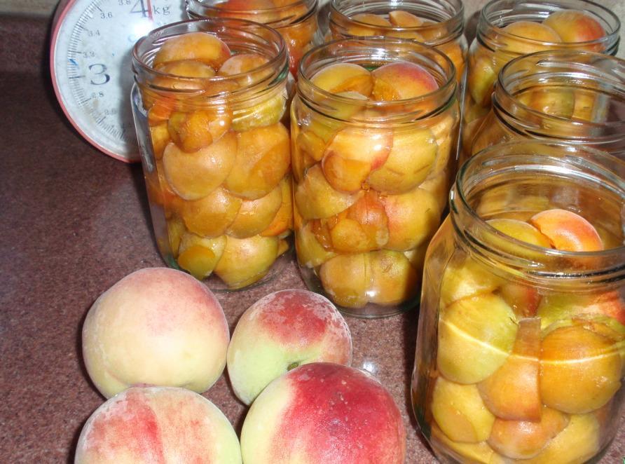 порода персики на зиму рецепты с фото как