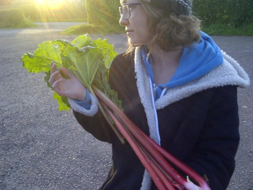 Lucy and the rhubarb