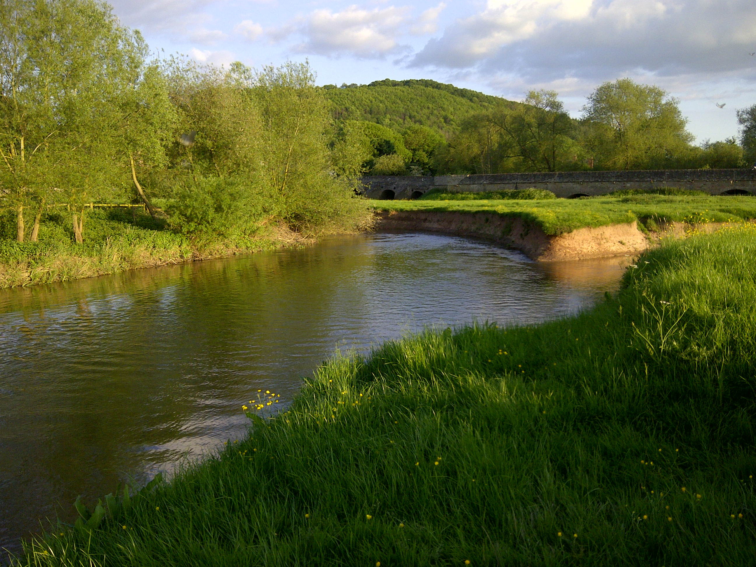 River swimming at Mordiford