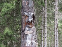 Locals are well into wood