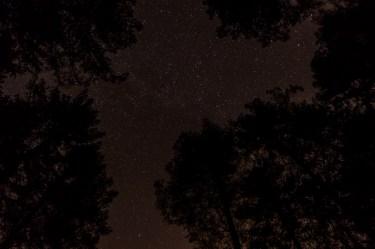 haind-woods-stars-redo-5